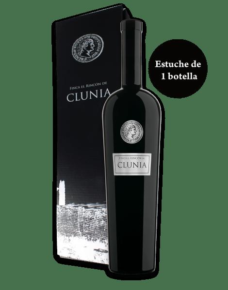Innovadores CLUNIA 1 bot El Rincon de clunia02